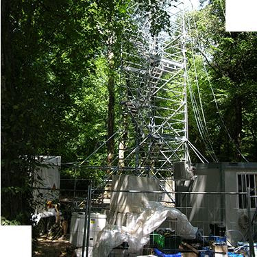 La torre che misura il respiro del bosco ottiene il marchio europeo ICOS